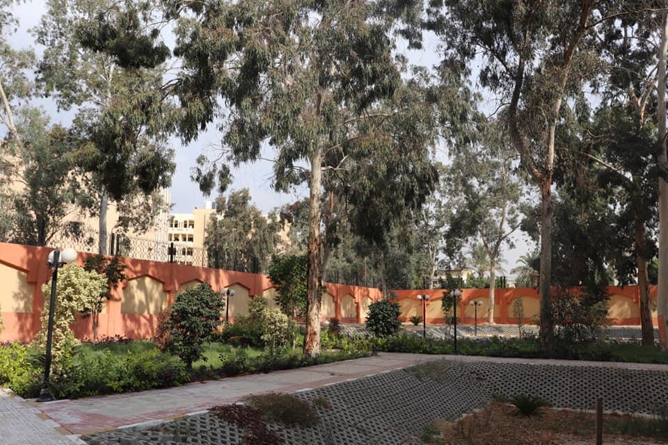 تجميل المدن الجامعية وتهذيب الأشجار والحدائق بجامعة الأزهر
