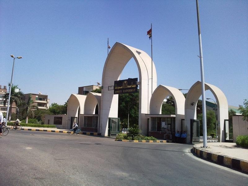 مجلس جامعة أسيوط يوافق على تعيين 36 مدرسًا بعدد من الكليات