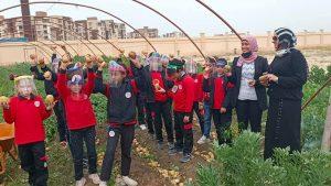 """مدير المدرسة المصرية اليابانية بدمياط يكشف فعاليات مشروع """"بستان الخير"""""""