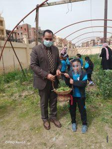 مدير المدرسة المصرية اليابانية بدمياط يكشف فعاليات موسم الحصاد