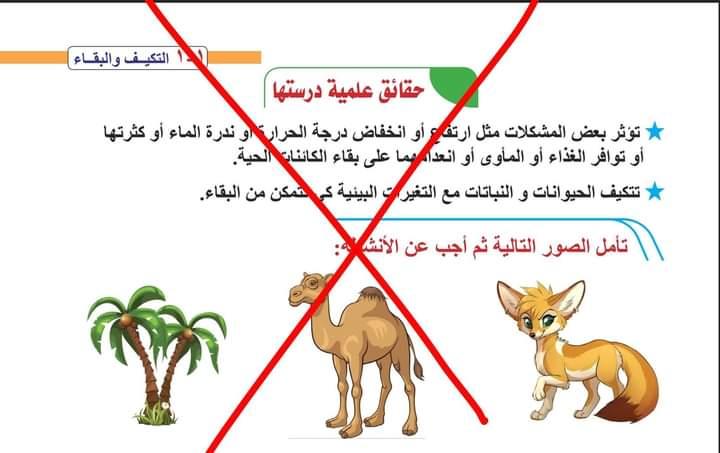 نصيحة طارق شوقي لأولياء أمور ومعلمي تعليم .02